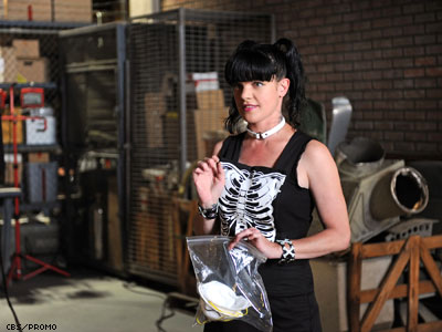 Fearless and Selfless: NCIS's Pauley Perrette