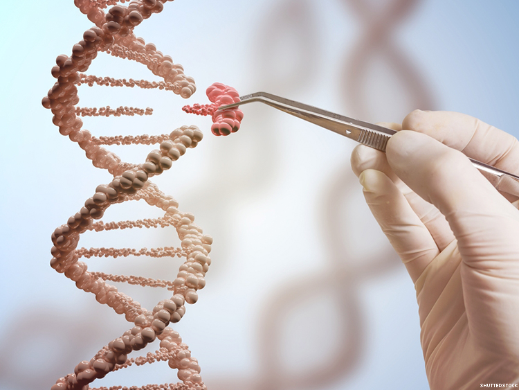Experts Skeptical of Findings That Suggest CRISPR Leads to Mutations