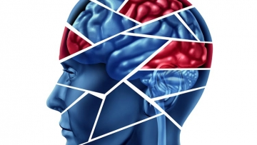 Does Having an Infection Increase the Odds of Developing Mental Disorders?