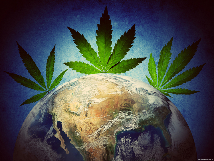 Earth Day is Almost Here: Celebrate with these New and Eco-Friendly Cannabis Products