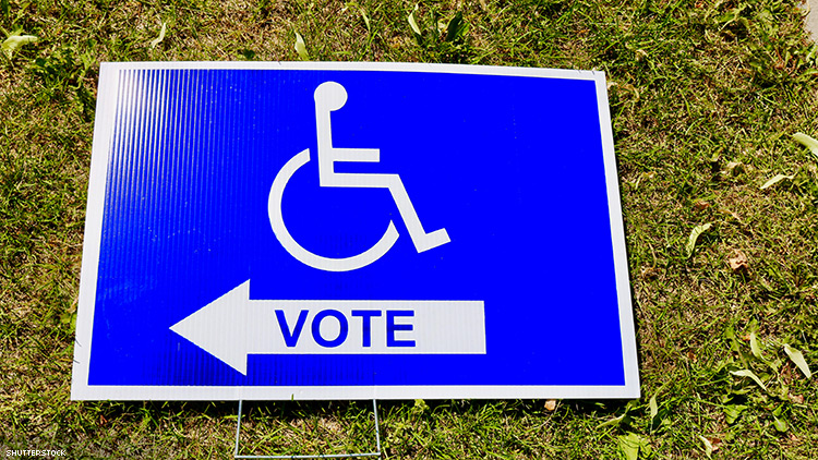 DISABILITY VOTER