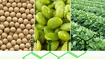 Soybeans to Treat HIV?
